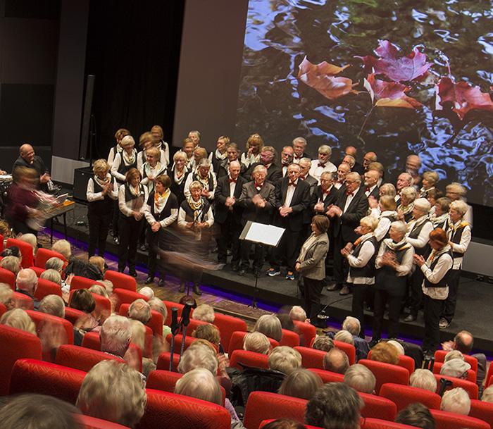 Bilde av Trondheim Eldrekor